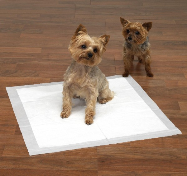 http://www.aler.si/uploads/how-to-use-puppy-training-pads.jpg